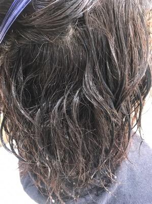 縮毛矯正をかける前のクセが出ている髪
