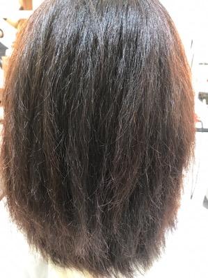 縮毛矯正の1液終了後、乾かした状態の髪
