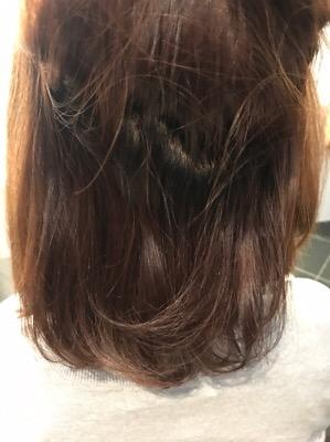 髪質改善トリートメント前の髪