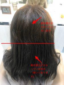 縮毛矯正とブリーチハイライトがどこまで入っているかを説明している写真