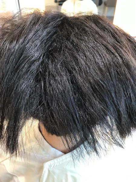 ドライした後の髪の状態